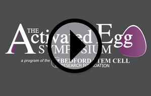 activated egg symposium videos