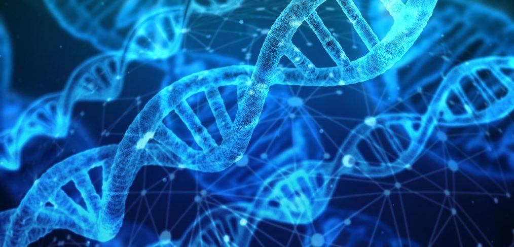 DNA render