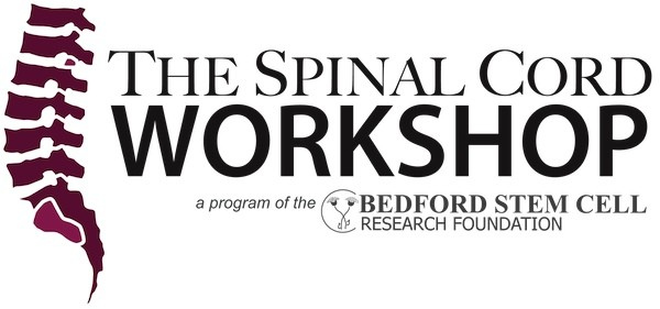spinal cord workshop